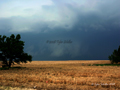 Approaching Wall Cloud - Grainfield, Kansas